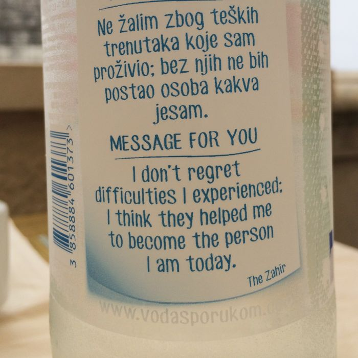 Dubravka_Water Bottle Wisdom