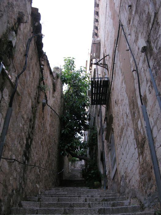 Dubrovnik Steps up to top