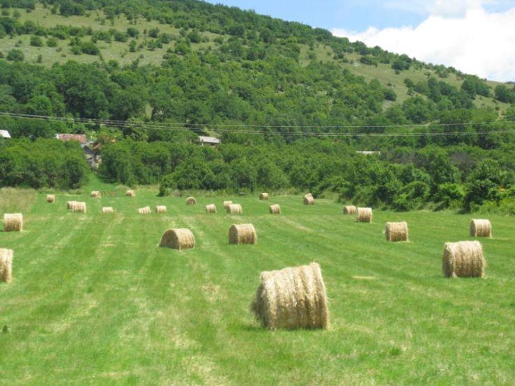 Croatia to Plitvice Rt 59 scenery