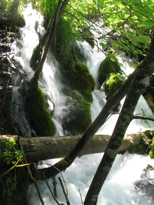 Plitvice8a_falls on moss