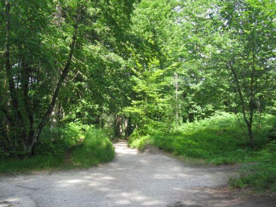 Plitvice8c_walkway onto partII