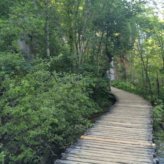 Plitvice9_paths