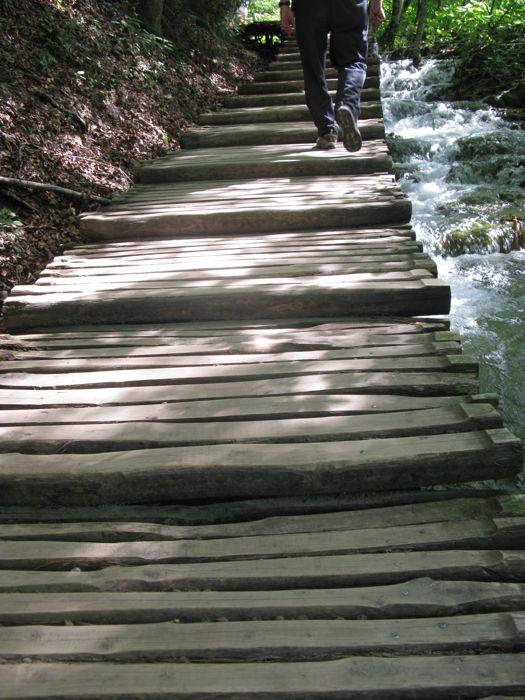 Plitvice9b_DAEs footsteps on path