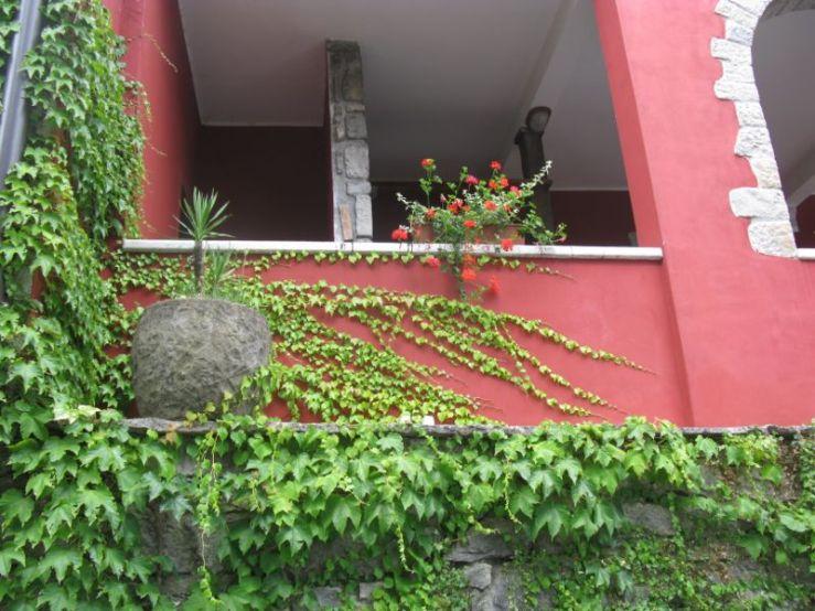 Buzet1f_ochre wall
