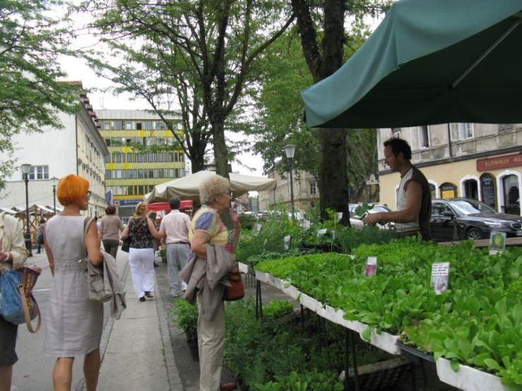 Ljubljana_market square1