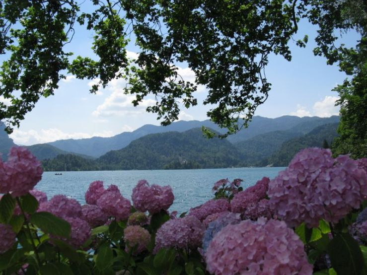 Slovenia_13 Lake Bled