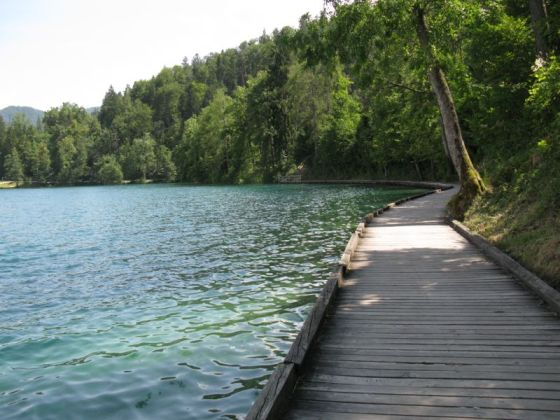 Slovenia_19 Lake Bled