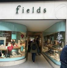 Store_fields