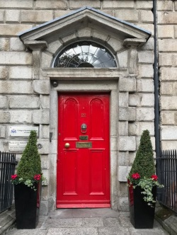 Merrion Square Door 14
